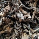Photo: Dried Black Trumpets.