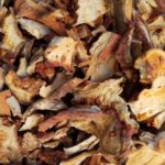 Photo: Dried Lobster Mushroom.