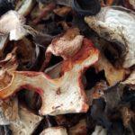 Photo: Wild Mushroom Mix.